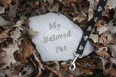Loss Of A Pet In Fall Royalty Free Stock Photography