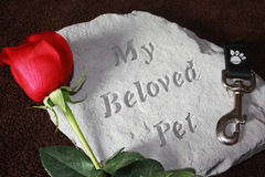 Loss of a Pet. A concrete stone helps to remember a pet that has died royalty free stock image