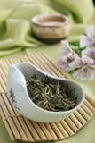 Lossa gröna teblad och koppen av grönt te Arkivfoton