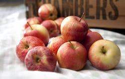 Losse appelen stock fotografie