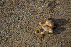 A lost bear doll fall down and lost on the street. The bear is dirty and lost it eye. Stock Photo