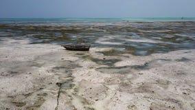 Aerial shot: lost boats in low tide, drought, island zanzibar. Lost boats in low tide, drought, island zanzibar stock video