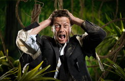 Lost in business jungle. Desperate businessman with head in hands and torn clothing lost in jungle stock images