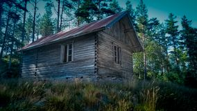 Lost cabin in the woods royalty free stock image