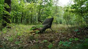Lost chair in the forest stock photography