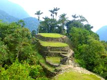 Free Lost City In Santa Marta In Colombia Stock Photography - 76095462