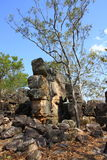 Lost city, Litchfield national park, northern territory, australia Royalty Free Stock Images
