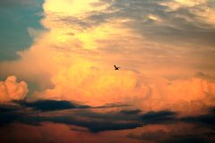 Lost in the clouds royalty free stock photos