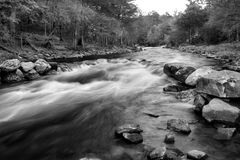 Lost Creek Black and White. Lost Creek fishing area at Beaver's Bend State Park Oklahoma, monochrome Stock Photos