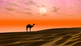 Lost in the desert Royalty Free Stock Photography
