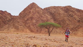 Lost in the Desert Man Runs to the Green Tree and Shade stock footage