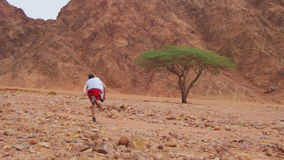 Lost in the Desert Man Runs to the Green Tree and Shade stock video
