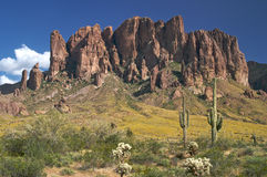 Lost Dutchman Stock Photos