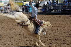 Lost Dutchman Days Rodeo Stock Images