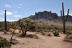 Lost Dutchman State Park Royalty Free Stock Photo