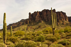 Lost Dutchman State Park Royalty Free Stock Image