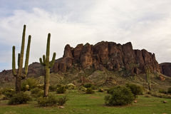 Lost Dutchman State Park Royalty Free Stock Photography