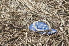 Lost flip flop. Lone flip flop abandoned in marsh grass stock photo