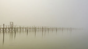 Lost in Fog. Stock Photo