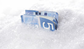 Lost and Found. A $5 Canadian banknote buried in snow royalty free stock image