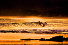 Lost Gold. Secret wave and beach in Nicaragua on the Pacific Ocean Stock Images