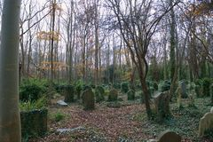 Lost graves Highgate Cemetery. Graves covered in ivy in the East Cemetery in Highgate Cemetery in London. The East cemetery is set in 9 acres of land. It was Stock Image