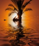 Lost Island. With submerged Palmtree and Bird on Driftwood Royalty Free Stock Photography