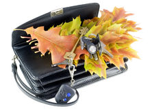 Lost keys and autumn leaves Royalty Free Stock Images