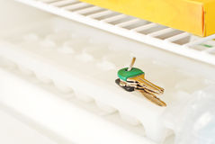 Lost Keys in the Freezer. On Top Of Ice Stock Image