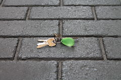 Lost keys Stock Images