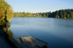Lost lagoon. In Stanley Park, Vancouver, BC. Early morning shot of the lagoon with small dock in the foreground Royalty Free Stock Image