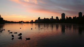 Lost Lagoon Dawn, Vancouver stock video footage