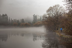 Lost Lagoon in winter Royalty Free Stock Image