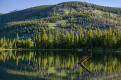 Lost Lake - Colorado. Reflection on Lost Lake, Nederland, Colorado Royalty Free Stock Photography