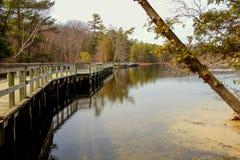 Lost Lake Trail. Boardwalk along the Lost Lake Trail in Ludington State Park.  Ludington, Michigan Stock Image