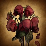Lost Love. And broken heart emotions concept with wilted dying red roses and falling petals on old parchment grunge texture as a symbol of grief and sadness Stock Photos