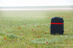 Lost luggage in wild tulips field Stock Photos