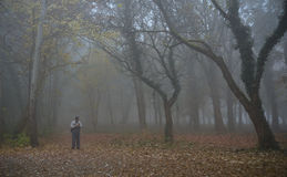 Lost man in the misty forest Stock Images