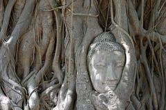 Lost in meditation Stock Photo