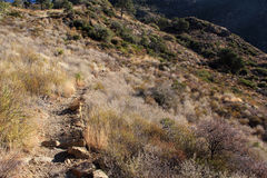 Lost Mine Trail. In Big Bend National Park, Texas Royalty Free Stock Images