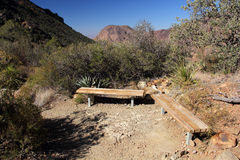 Lost Mine Trail. In Big Bend National Park, Texas Royalty Free Stock Photography