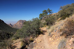 Lost Mine Trail. In Big Bend National Park, Texas Stock Photos