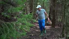 Lost mushroom picker using smart phone gps signal to get out from forest. Lost mushroom picker with basket using smart phone gps signal to get out of dark forest stock video footage
