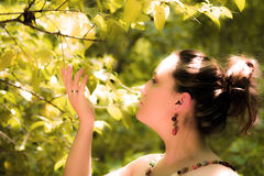 Lost in Nature. This woman was lost in natures beauty as she wondered the forest Royalty Free Stock Photography
