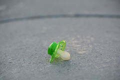 Lost pacifier Stock Image