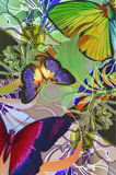 Lost paradise. Tropical jungle illustration with butterflies and colorful lillies Royalty Free Stock Images
