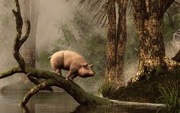 Lost Pig in a Flooded Forest vector illustration