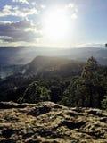 Lost Pine Valley. Taken deep inside the mountains of Tegucigalpa, Honduras Stock Images