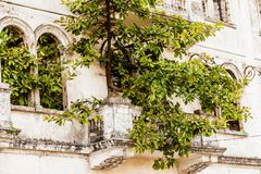 Lost Places - abandoned mansion in the center of Panama City. Panama royalty free stock photography