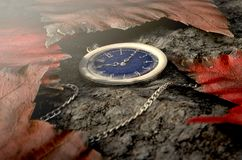 Lost Pocket Watch On Chain Royalty Free Stock Photography